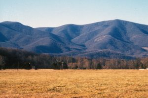 The Blue Ridge Mountains rises steeply above the Tye River floodplain in Nelson County