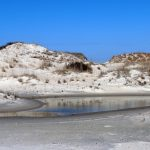 Dunes at False Cape State Park in Virginia Beach.  Dunes are common features along the Virginia coast.