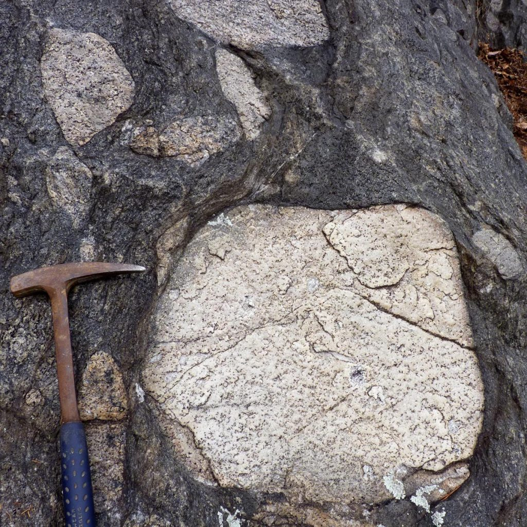 Boulder conglomerate in the Rockfish Conglomerate at the base of the Neoproterozoic Lynchburg Group
